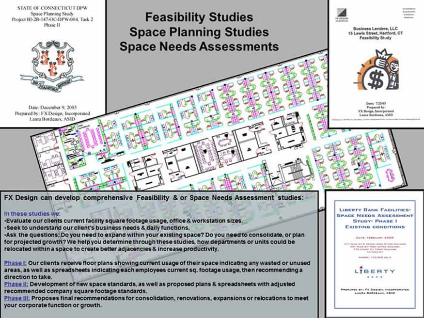 Feasibility Study steps