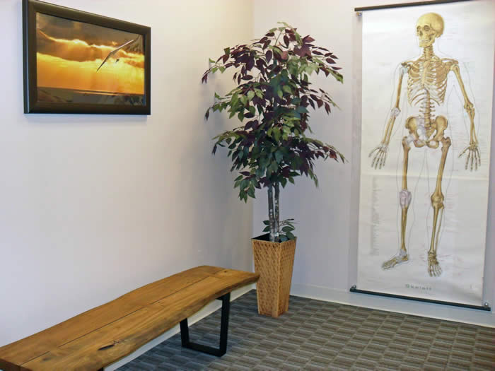 Orthopedic Surgeon Office seating area with rustic bench and artwork
